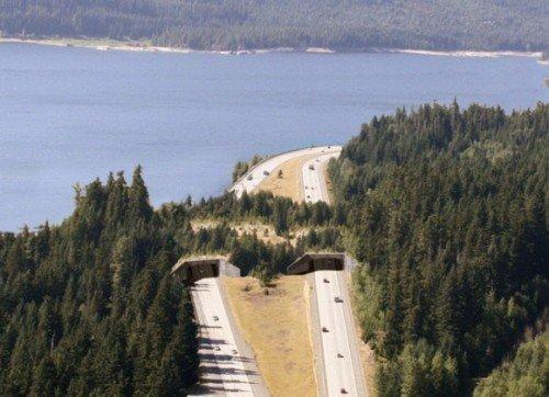 Keechelus Lake in Washington USA